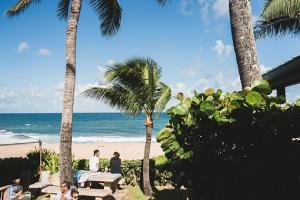 Wakacje pod palmami dla wymagających